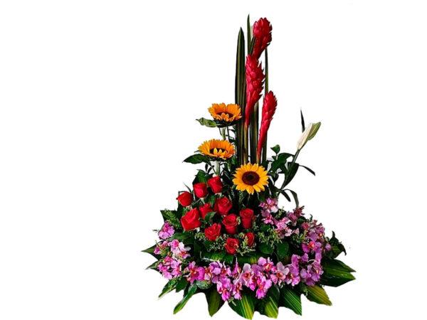 flores y mas en bogota