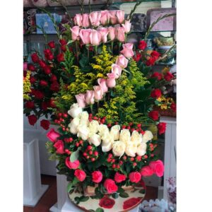 Rosas Exportación Bogota