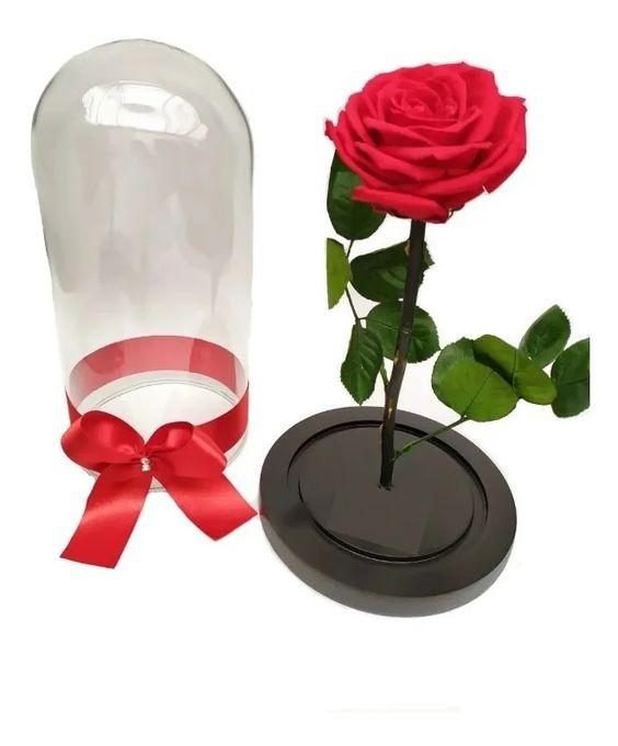 Rosas preservadas en Arauca