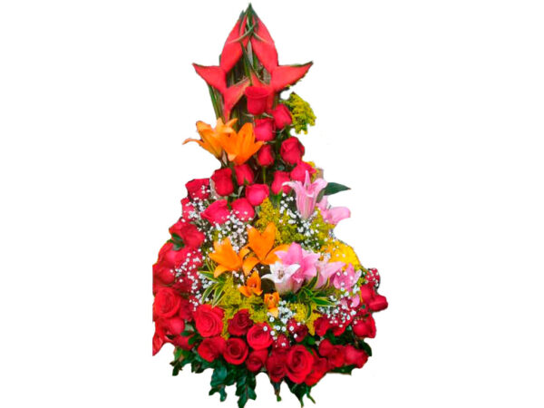 Flores Bogota Colombia