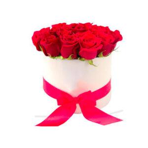 Rosas preservadas en Cajica