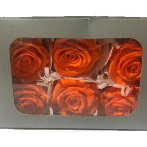 Cajas de rosas preservadas