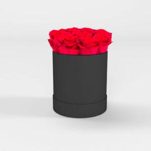 Rosas preservadas en Sopo